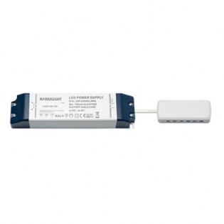 LED Transformator | Verteiler 12-Loch | Serie | 36 Watt | 700 mA L2057-36-700-CON12